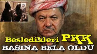 Besledikleri PKK başlarına bela oldu! Barzani acil kodlu çağrı yaptı