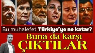 Bu muhalefet Türkiye'ye ne katar?