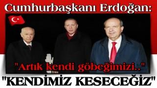 Cumhurbaşkanı Erdoğan: Göbeğimizi kendimiz kesmek durumundayız