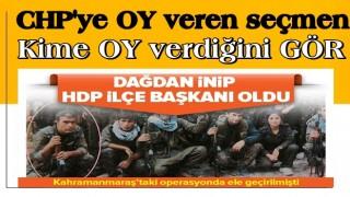 Dağdan inip HDP ilçe başkanı oldu! İnkar etti ama... .