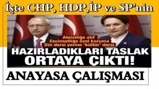 Federasyon anayasası: CHP, İYİ Parti, SP ve HDP'nin taslağı ortaya çıktı