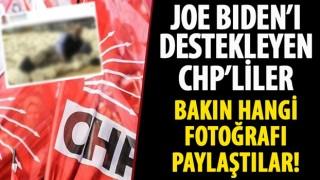 Joe Biden'ı destekleyen CHP'liler Mahmut Tanal'ın oy torbaları üzerinde yattığı fotoğrafı paylaşıyor