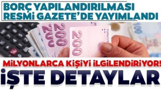 Vergi ve prim borcu düzenlemesi Resmi Gazete'de yayımlandı! İşte detaylar...