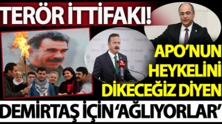 CHP ve İyi Parti'den skandal 'Selahattin Demirtaş' çağrısı