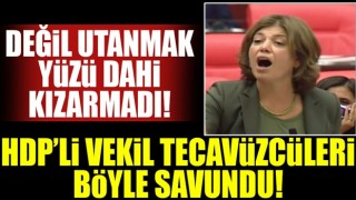 HDP'li vekil tecavüzcüleri savundu!