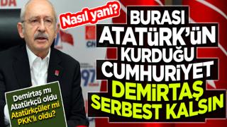 K.K ; Burası Atatürk'ün kurduğu Cumhuriyet, Demirtaş serbest kalsın!