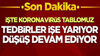 Türkiye'nin 11 Ocak koronavirüs tablosu! İşte vaka sayısı, can kaybı...