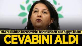 Terör sevici HDP'li Buldan koronavirüs haritasından bile algıya kalktı