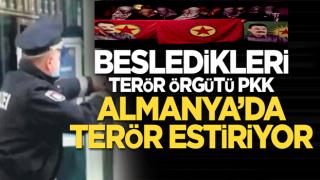 Besledikleri PKK Almanya'da terör estiriyor