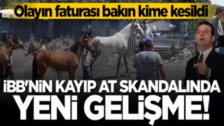 CHP'li İBB'nin kayıp at skandalında yeni gelişme! Görevinden alındı