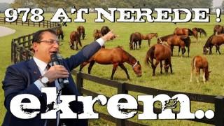 İBB'nin kaybettiği 978 at nerede?