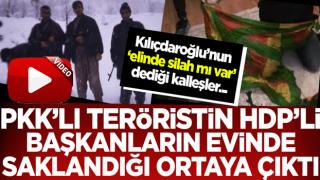 HDP'li ilçe başkanının PKK'lı teröristi evinde sakladığı ortaya çıktı