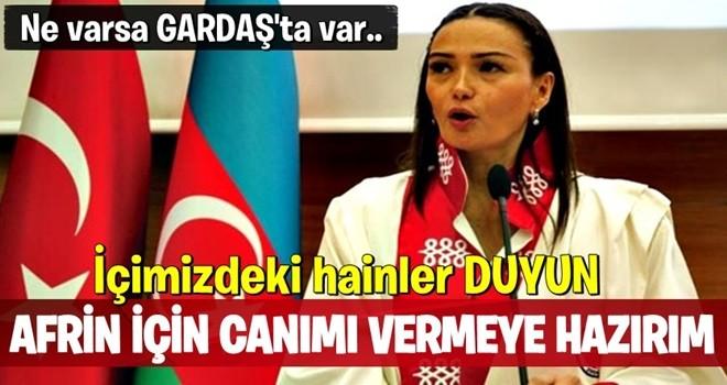 Azeri milletvekili Paşayeva: Afrin'de gerekirse ben de canımı veririm
