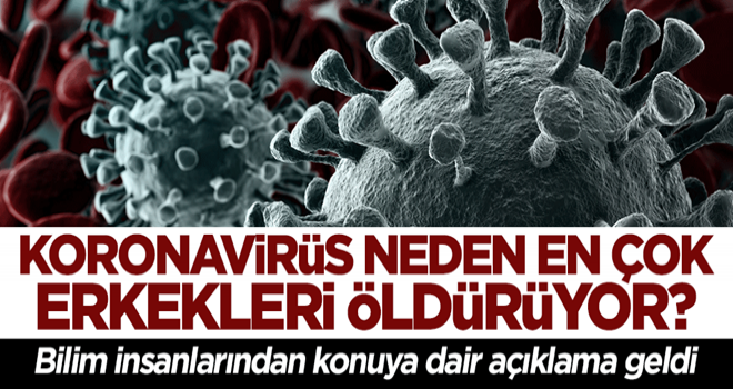 Bilim insanları ilk kez açıkladı! Koronavirüs neden en çok erkekleri öldürüyor?