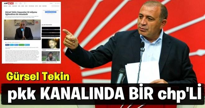 PKK kanalına çıkan CHP'li Gürsel Tekin'den skandal sözler