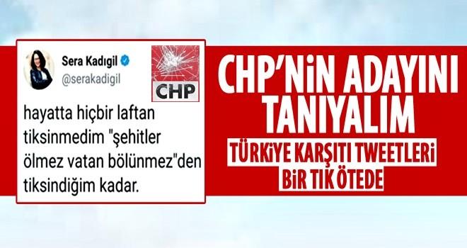 Şehitlere hakaret eden Kadıgil, CHP'nin listesinde