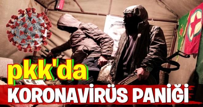 PKK'da koronavirüse yakalanan teröristler kaderlerine terk ediliyor
