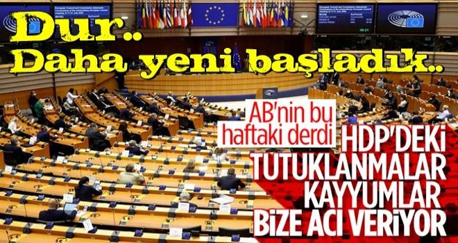 AB'den HDP'ye tutuklanmalar ile kayyumlara destek geldi