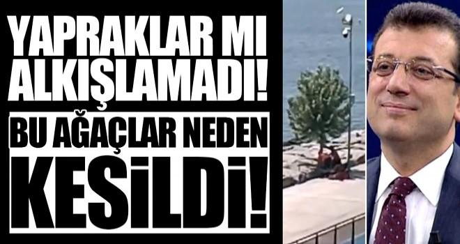AK Partili isim açıkladı! İmamoğlu bakın bu sefer ne yaptı?