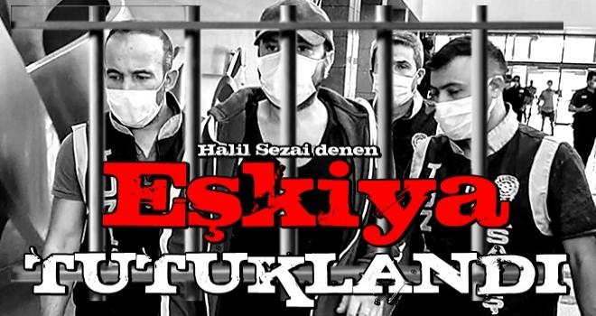 Halil Sezai hakkında karar